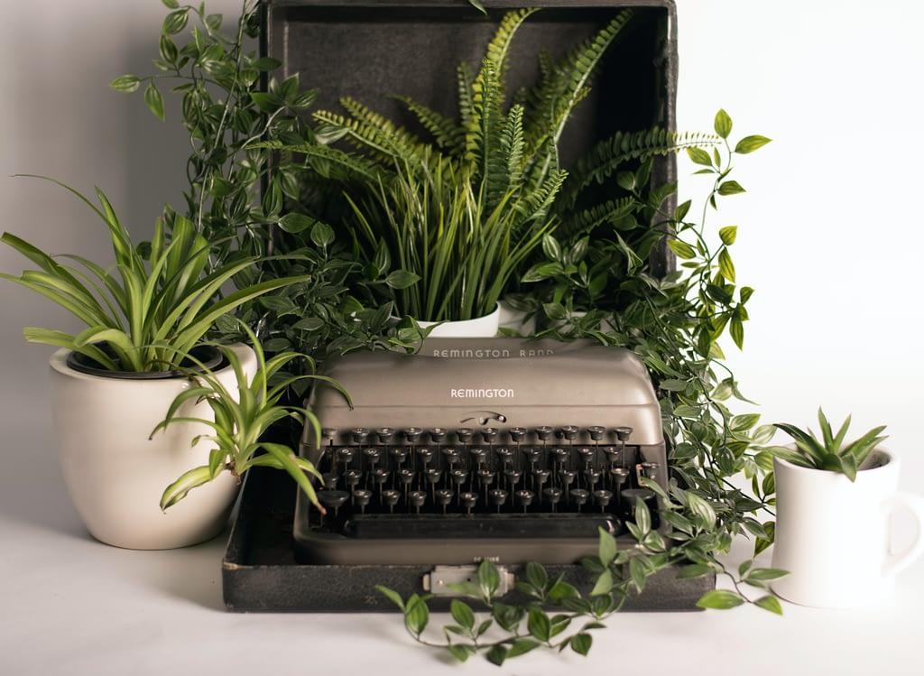 Schreibmaschine umgeben von Pflanzen